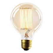 Newhouse Lighting 60W E26/Medium (Standard) Incandescent Vintage Filament Light Bulb