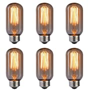 Newhouse Lighting 60W E26/Medium (Standard) Incandescent Vinatge Filament Light Bulb (Set of 6)