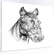 DesignArt 'Freehand Horse Head Pencil Drawing' Graphic Art on Metal; 12'' H x 28'' W x 1'' D
