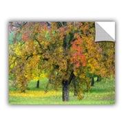 ArtWall Cora Niele Autumn Tree Wall Decal; 18'' H x 24'' W x 0.1'' D