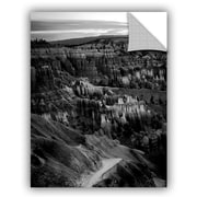 ArtWall Mike Beach Arizona 20 Wall Decal; 32'' H x 24'' W x 0.1'' D