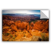 ArtWall Mike Beach Arizona 41 Wall Decal; 12'' H x 18'' W x 0.1'' D