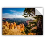ArtWall Mike Beach Arizona 42 Wall Decal; 8'' H x 12'' W x 0.1'' D