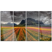 DesignArt 'Beautiful Colored Tulips Panorama' 4 Piece Photographic Print on Canvas Set