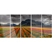 DesignArt 'Beautiful Colored Tulips Panorama' 5 Piece Photographic Print on Canvas Set