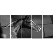 DesignArt 'Black Arabian Horse Portrait' 5 Piece Photographic Print on Canvas Set