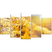 DesignArt 'Bright Yellow Rural Garden Flowers' 5 Piece Photographic Print on Canvas Set