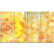DesignArt 'Beautiful Floral Yellow Background' 4 Piece Photographic Print on Canvas Set