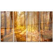 DesignArt 'Bright Sunlight in Yellow Fall Forest' 4 Piece Photographic Print on Canvas Set