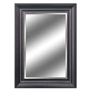 Y Decor Reflection Bevel Wall Mirror