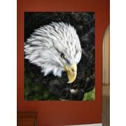 Wallhogs Batie's Bald Eagle Glossy Poster; 36'' H x 29'' W