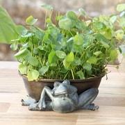 SPI Home Fairy Aluminum Pot Planter