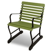 Ivy Terrace Vintage 22'' Arm Chair; Black/Lime
