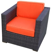International Home Miami Aventura Arm Chair w/ Cushion (Set of 2); Polyester Orange