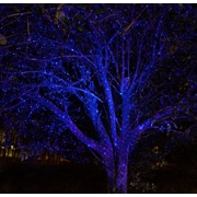 Wintergreen Lighting Static Laser Projector; Blue