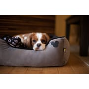 Disney Disney Mickey Mouse Rectangular Cuddler Bed; Grey
