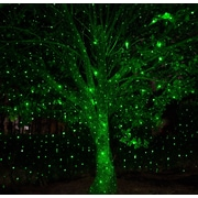 Wintergreen Lighting Static Laser Projector; Green