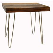 Nicahome Crane End Table; Stainless Steel