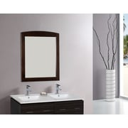 American Imaginations Rectangle Wood Framed Wall Mirror; Brushed Nickel