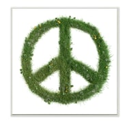 Stupell Industries 'Grass Peace Sign' by Daphne Polselli Framed Graphic Art