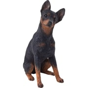 Sandicast Mid Size Sculptures Pinscher Figurine; Black