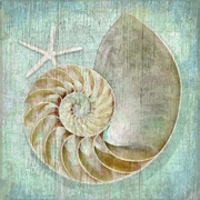 Vintage Signs Nautilus Wall Art by Suzanne Nicoll Graphic Art Plaque