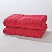 Darby Home Co Bloomberg Bath Sheet (Set of 2); Cranberry
