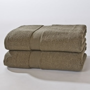 Darby Home Co Bloomberg Bath Sheet (Set of 2); Moss Green