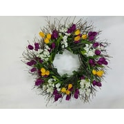 Dried Flowers and Wreaths LLC Spring Beauty 22'' Wreath
