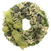 Floral Treasure Royal Thistle Wreath; 18'' H x 18'' W