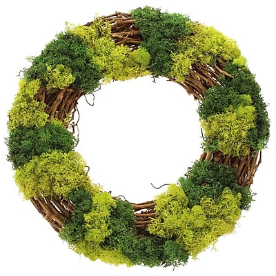Floral Treasure Mossy Lane Wreath; 16'' H x 16'' W x 3'' D WYF078280041051