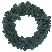 Floral Treasure Preserved Dollar Wreath; 30''