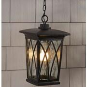 Darby Home Co Stoneridge 1-Light Outdoor Hanging Lantern