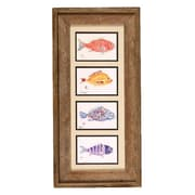FishAye Trading Company 'Fish Collage' by Gyotaku Framed Print of Painting