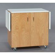 SMIProducts TB Series Art Station; Medium (Golden Oak) Stained
