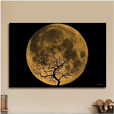 Maxwell Dickson Orange Moon Graphic Art on Wrapped Canvas; 24'' H x 36'' W