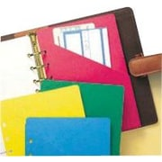 Day-Timer® Colorlife® Slash Pockets, Desk Size
