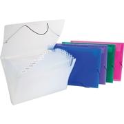 Staples® Plastic Expanding File, Letter Size, Each