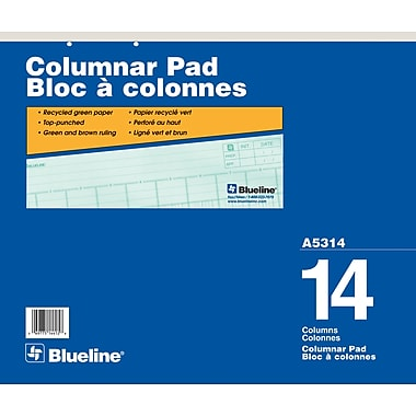 Blueline® Columnar Pad, A5314, 14 Columns