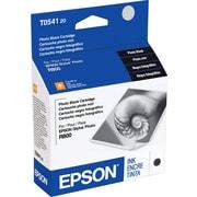 Epson 54 Photo Black Ink Cartridge (T054120)