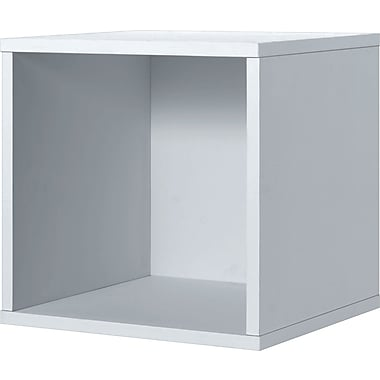 Foremost® Hold'ems Modular Cube Storage System, White 15in.H x 15in.W x 15in.D Open Cube