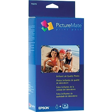 Epson T5570-G Color Ink Cartridge & 100 Sheets Glossy Photo Paper