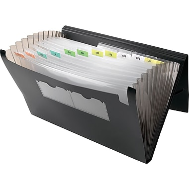 Winnable Poly Expanding File, 13-Pocket, Legal Size, Black