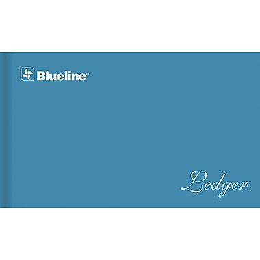 Blueline® Mini Ledger System and Refill Sheets