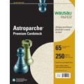 Wausau Astroparche® Natural Card Stock, 8 1/2in. x 11in., 250/Pack