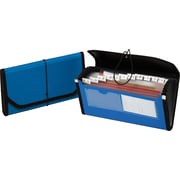 Globe-Weis® 13-Pocket Poly Check File, Each