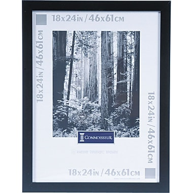 DAX Black Wooden Poster Frame, Plexiglas® Window, 18 x 24