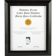 Solid Wood Award and Certificate Frames, Black/Walnut Moulding, 8 x 10