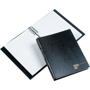 "BlueLine® Account Pro™ Record Books, 10-1/4"" x 7-11/16"""