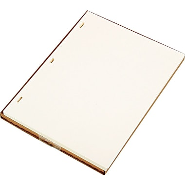 Looseleaf Minute Ledger Sheets, Ivory Linen, 11